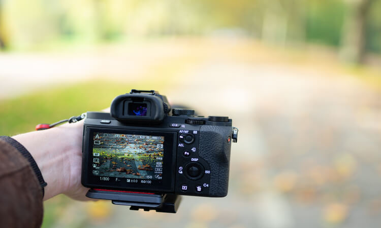 How To Carry A Camera Without A Bag: Fun DIY Alternative