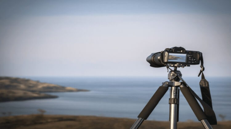 The 7 Best Camera Tripods For The Money