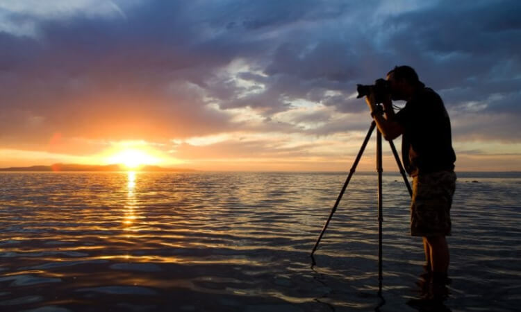 The 7Best Camera Tripods For Travel