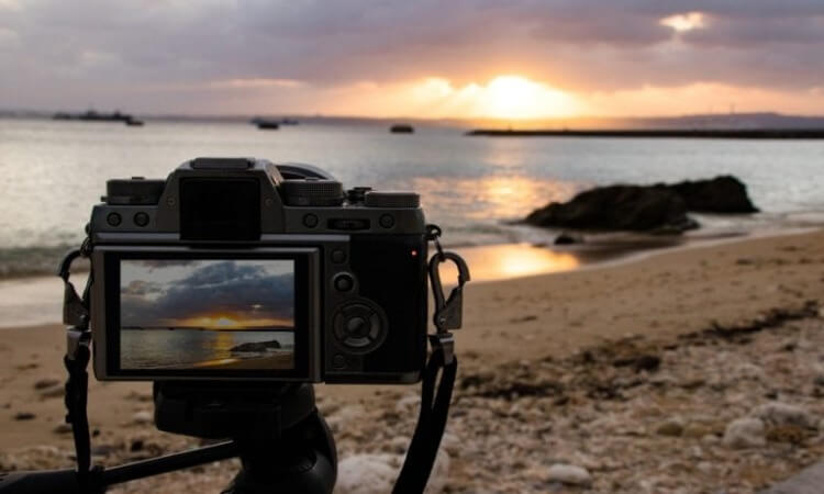 The 7 Best Cameras For Low-Light Photography